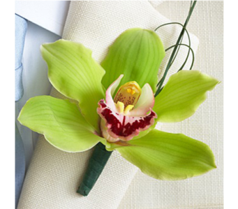 Cymbidium Boutonniere in Indianapolis IN, George Thomas Florist