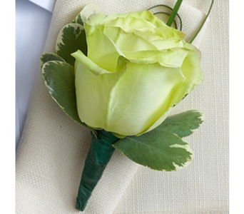 Green Rose Boutonniere in Indianapolis IN, George Thomas Florist