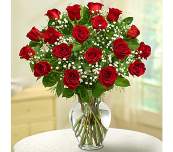 18 Red Roses & Babies Breath in Indianapolis IN, George Thomas Florist