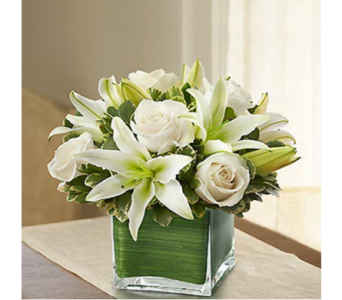 White Rose and Lily Cube in Indianapolis IN, George Thomas Florist