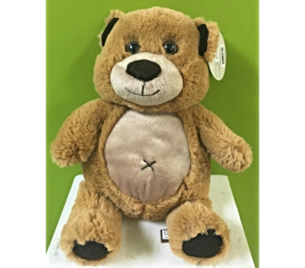 Light Brown Plush Bear in Jamesburg NJ, Sweet William & Thyme