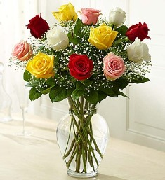 Premium Long Stem Assorted Roses in Camp Hill and Harrisburg PA, Pealers Flowers