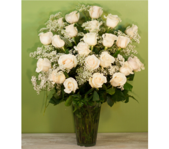 Two Dozen White Roses with Babies Breath in Merrick NY, Feldis Florists