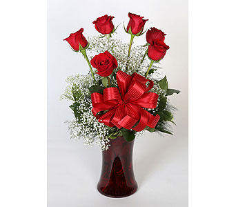 Half Dz Red Roses Vased in Southampton PA, Domenic Graziano Flowers