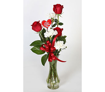 3 Red Roses and White Carnations Vased in Southampton PA, Domenic Graziano Flowers