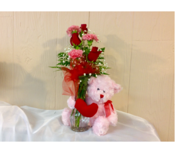 Cuddle Bear in Fairfield OH, Novack Schafer Florist