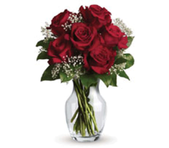 6 RED ROSES in Stamford CT, Stamford Florist