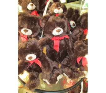 Teddy Bears in Derby KS, Mary's Unique Floral & Gift