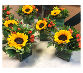 SUNFLOWER TABLE TOP in Bellmore NY, Petite Florist