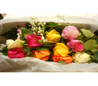 Dozen Pastel Roses Boxed in Skowhegan ME, Boynton's Greenhouses, Inc.