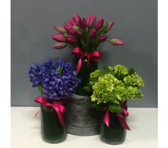 Springtime Trio in Thornhill ON, Orchid Florist