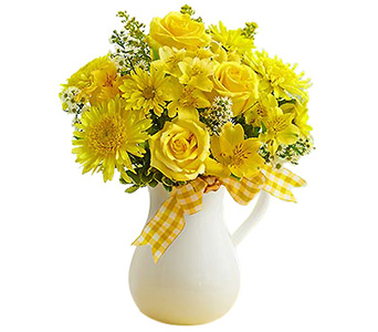 Pitcher of Sunshine�