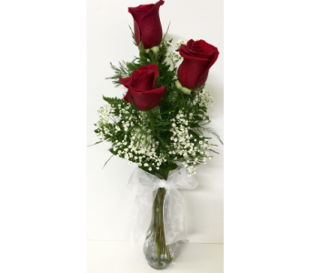 Trio Red Rose Budvase in Wyoming MI, Wyoming Stuyvesant Floral