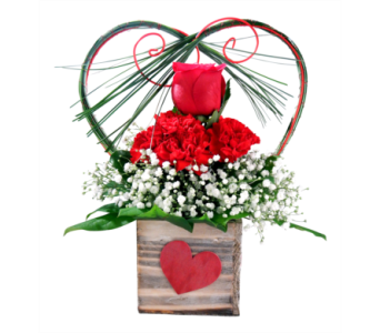 Cupid's Crush in Detroit and St. Clair Shores MI, Conner Park Florist