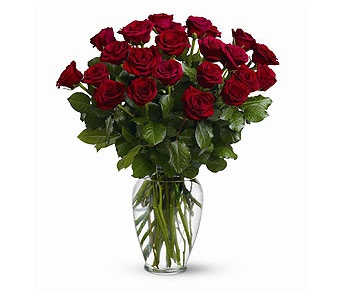 Two Dozen Red Roses in Asheville NC, Merrimon Florist Inc.