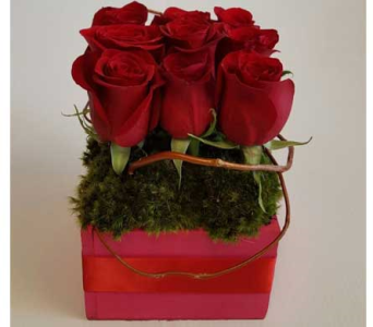 Valentine Kiss in Las Vegas-Summerlin NV, Desert Rose Florist