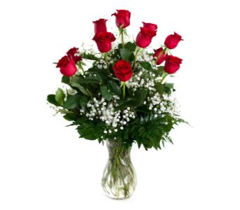 Classic Dozen Roses in Nashville TN, Emma's Flowers & Gifts, Inc.