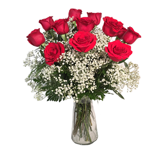 George's Gorgeous Long Stemmed Dozen in Madison WI, George's Flowers, Inc.