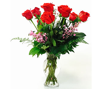 Dz Red Roses in Northfield MN, Forget-Me-Not Florist