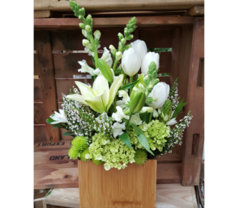 Every Day 5 in Sioux Falls SD, Cliff Avenue Florist