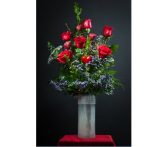 Romantic Half Dozen Roses in Winter Haven FL, DHS Design Guild