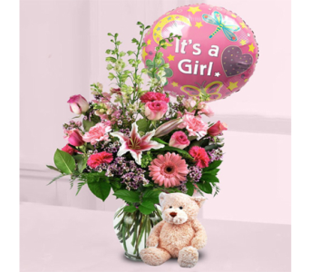 Baby Girl Surprise! in Indianapolis IN, George Thomas Florist