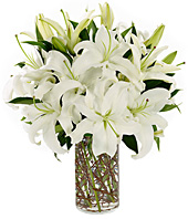 Simply Lilies in Nashville TN, Emma's Flowers & Gifts, Inc.