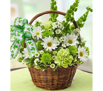 St. Patrick's Day Flower Basket in Guelph ON, Patti's Flower Boutique