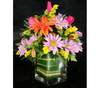 Mixed Spring with Roses in Cube in Mililani Town HI, Mililani Town Florist