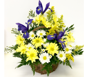 Thoughts of Spring Bouquet-9 Inch Basket-One-Sided in Wyoming MI, Wyoming Stuyvesant Floral