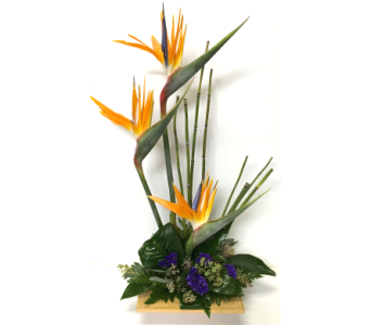 Birds of Paradise in Bamboo Arrangement in Wyoming MI, Wyoming Stuyvesant Floral