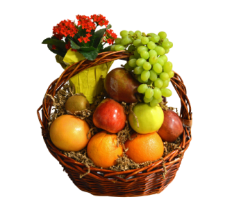 Fruit & Plant Basket in Richboro PA, Fireside Flowers