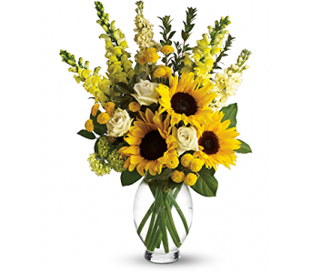 Here Comes The Sun in Placentia CA, Expressions Florist