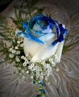 white rose with blue and glitter tipped in Sitka AK, Bev's Flowers & Gifts