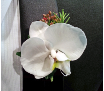 White Orchid Boutonniere in Scarborough ON, Helen Blakey Flowers