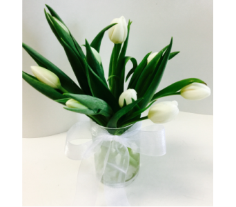 White Tulips in Northfield MN, Forget-Me-Not Florist
