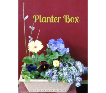 Spring Planter Box  in Quakertown PA, Tropic-Ardens, Inc.