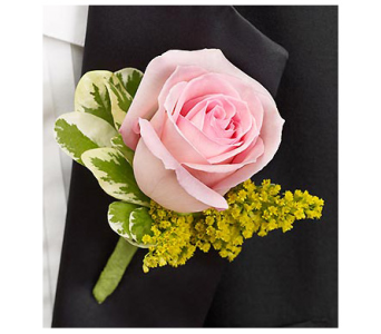 Pink Rose with Golden Aster Boutonniere in Virginia Beach VA, Fairfield Flowers