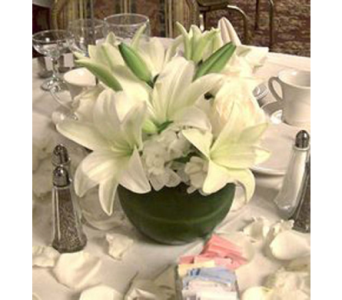 White Lily Bowl in Campbell CA, Citti's Florists