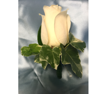 White Rose Boutonniere with Ivy in Bethesda MD, Suburban Florist