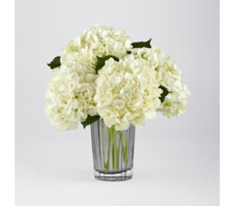 FTD Ivory Hydrangea Bouquet by Vera Wang in New York NY, CitiFloral Inc.