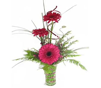 Gerbera Spirals in Amherst NY, The Trillium's Courtyard Florist
