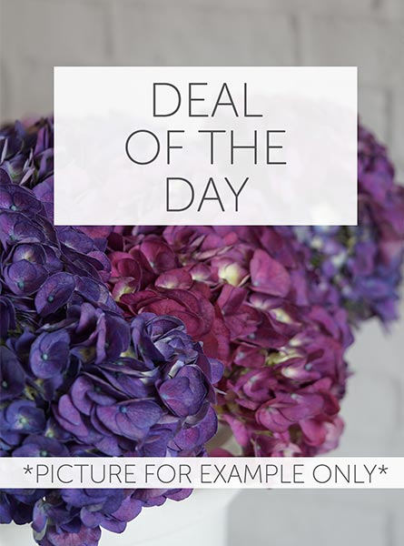 Deal of the Day in Clarks Summit PA, McCarthy-White's Flowers