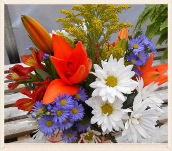 Florist Choice of Mixed Wrapped  Flowers in Skowhegan ME, Boynton's Greenhouses, Inc.