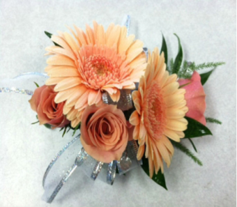 Peach Gerberas in Campbell CA, Citti's Florists