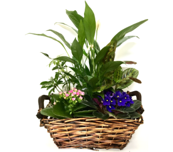 Touch of the Garden Basket Planter in Wyoming MI, Wyoming Stuyvesant Floral