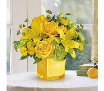 Sunny Mood in Indianapolis IN, George Thomas Florist