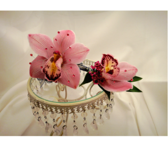 Pink Cymbidium Orchid Set in Greenville SC, Expressions Unlimited