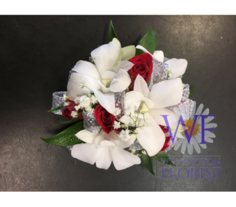 White orchid and red rose wristlett in Wellington FL, Wellington Florist