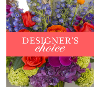 DESIGNERS CHOICE in Salisbury MD, Kitty's Flowers